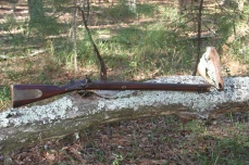 3. Brunswick Rifle Hog